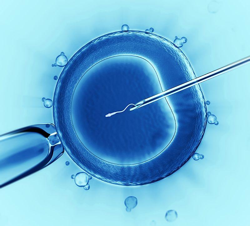 Eficacia del tratamiento con acupuntura en los procesos de fertilización in vitro