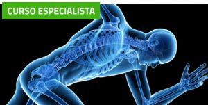 Curso Experto en Acupuntura y Estimulación Neuro-Refleja®: Patologías Músculo-Esqueléticas. (Ilustre Colegio Oficial de Fisioterapeutas de la Región de Murcia)