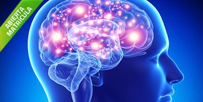 Curso de acupuntura estimulación neuro refleja